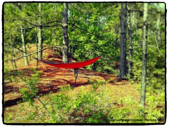 Relaxing bed in the woods