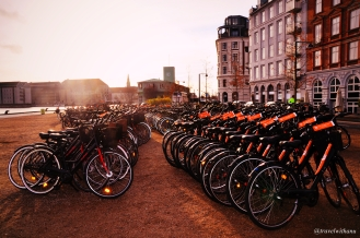 copenhagen-on-bike