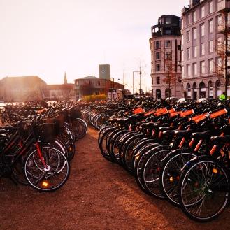 copenhagen-on-bike